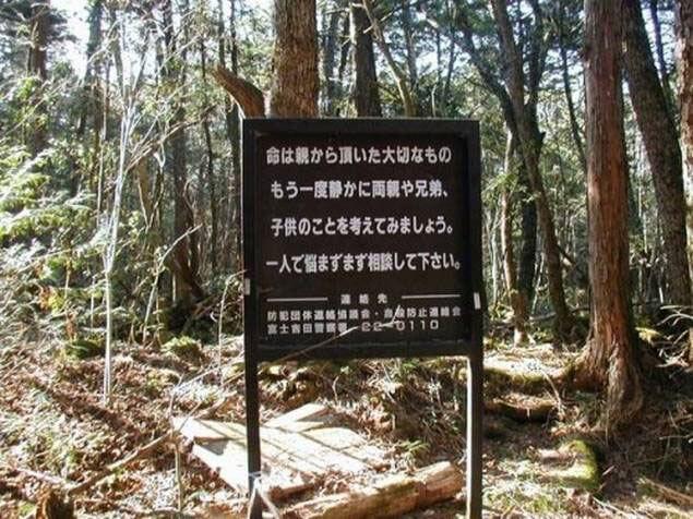 Aokigahara, la foresta più infestata al mondo